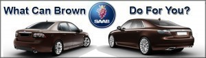 Brown Saabs